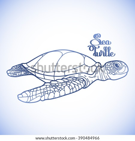 Graphic Hawksbill sea turtle drawn in line art style. Ocean vector creature in blue colors isolated on white background. Side view. Coloring book page design - stock vector