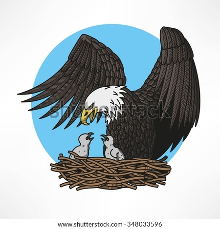 Graphic illustration of bald eagle witn chicks in the nest - stock vector