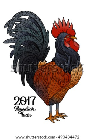 Graphic rooster drawn in line art style. Symbol of 2017 year isolated on the white background in red,brown and black colors.