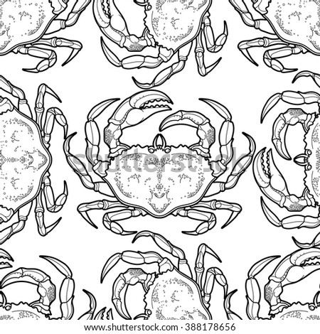 Graphic vector crab drawn in line art style. Sea and ocean seamless pattern. Top view. Seafood element. Coloring book page design for adults and kids