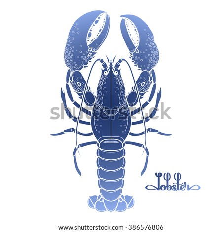Graphic vector lobster drawn in line art style. Sea and ocean creature in blue colors. Top view. Seafood element. Coloring book page design - stock vector