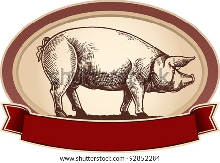 Graphical pig, in frame with ribbon - stock vector