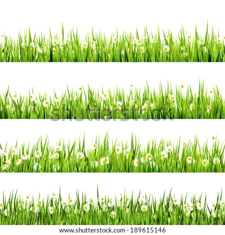 Grass and Flowers border art Design. And also includes EPS 10 vector - stock vector