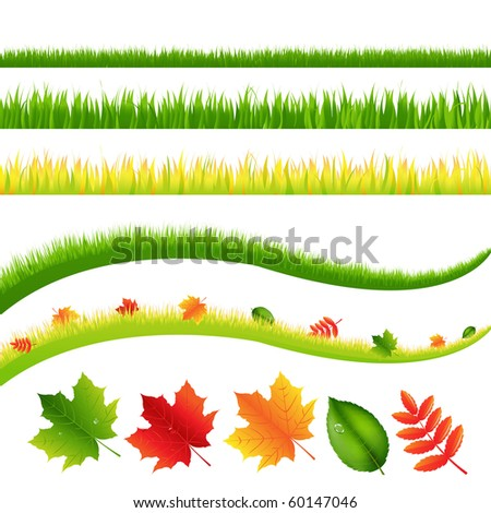Grass And Leaves Set, Isolated On White Background, Vector Illustration - stock vector