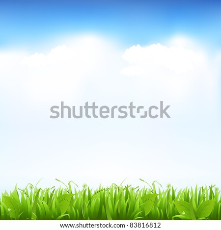 Grass And Sky, Vector Illustration - stock vector