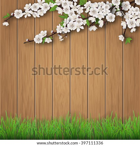 Grass and spring cherry branch on brown old wooden planks background. Vector garden background.