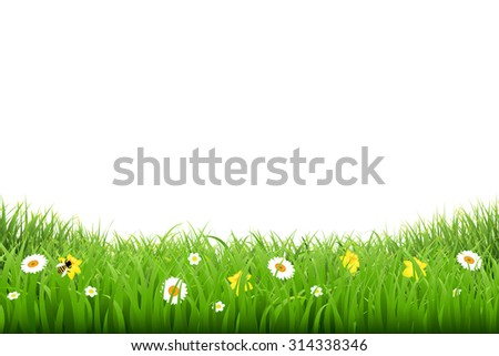 Grass Border With Flowers With Gradient Mesh, Vector Illustration - stock vector
