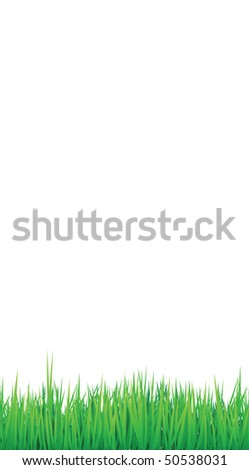 grass borders background, vector can be arranged for seamless effect - stock vector