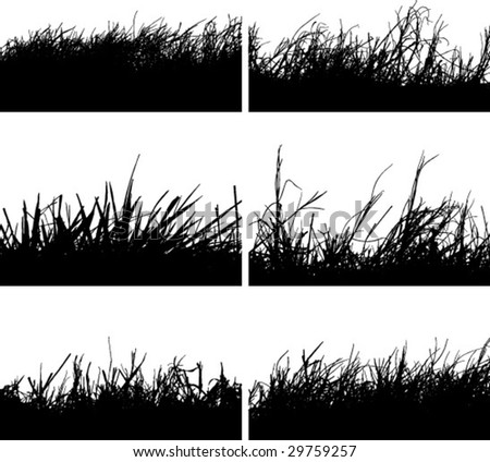 grass bushes silhouette