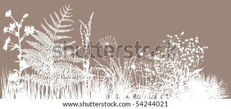 Grass field - stock vector