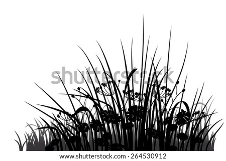 Grass, herbs and flowers silhouette, vector illustration - stock vector