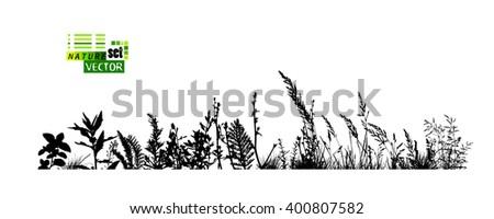 grass horizontal line. Vector - stock vector