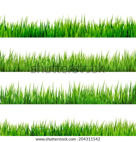 Grass isolated on white. And also includes EPS 10 vector - stock vector