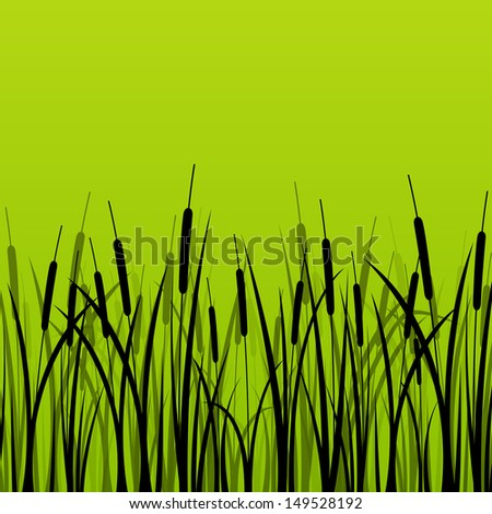 Grass, reed and wild plants detailed silhouettes illustration background vector - stock vector