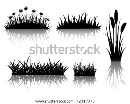 grass  silhouette with reflection - stock vector