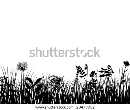 Grass silhouettes ornate on the white background