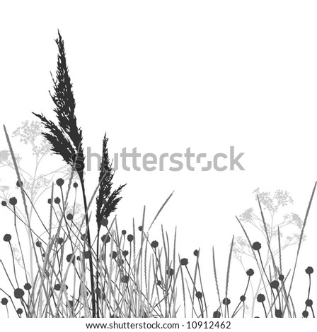 Grass silhouettes / vector / elements are separated - stock vector