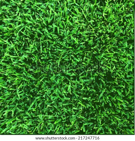 Grass Texture, Vector Illustration - stock vector
