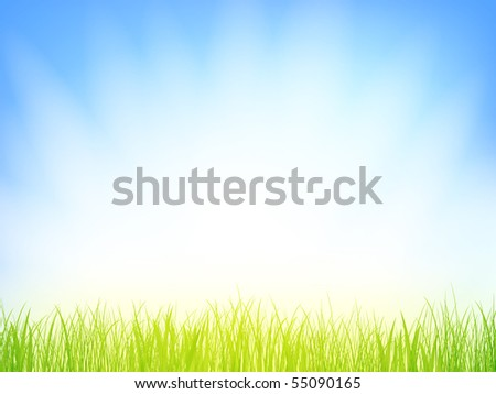 grass with sun shine over blue sky, copyspace for your text - stock vector
