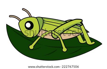 grasshopper - stock vector