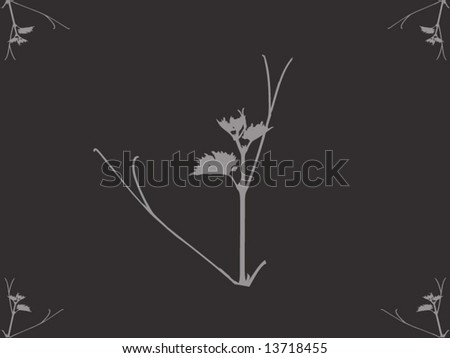 gray background with beautiful herb