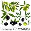 Green and black olives with leaves. vector illustration. - stock vector