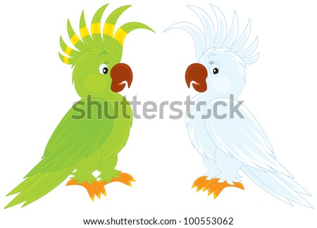 green and white cockatoos - stock vector