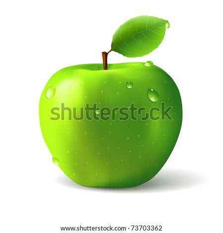 Green apple with water drops - vector illustration - stock vector