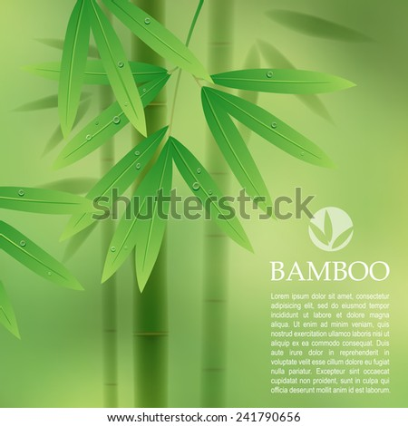 Green background with bamboo stems and leaves. Vector illustration - stock vector