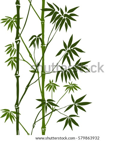 Green bamboo seamless vertical border on white background. Tropical wallpaper, nature textile print, template with text place.