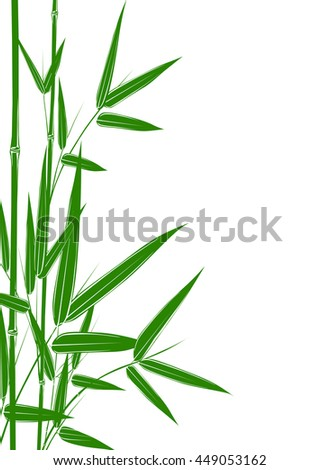 green bamboo stems on white background vector illustration