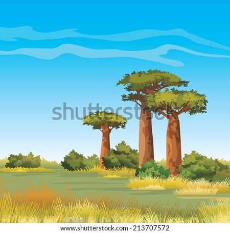Green baobabs and yellow grass on a blue sky. African vector landscape. - stock vector