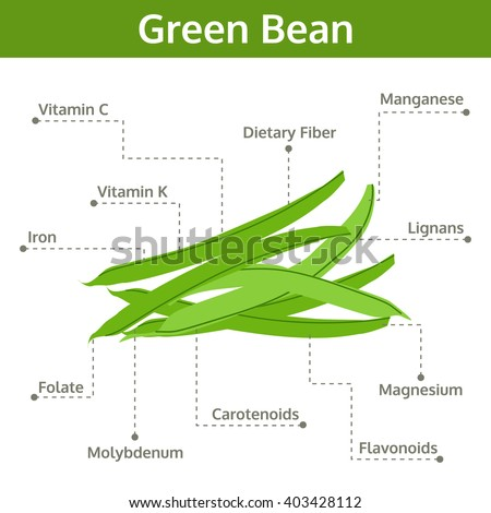 Green Bean Diagram Data Wiring Diagrams
