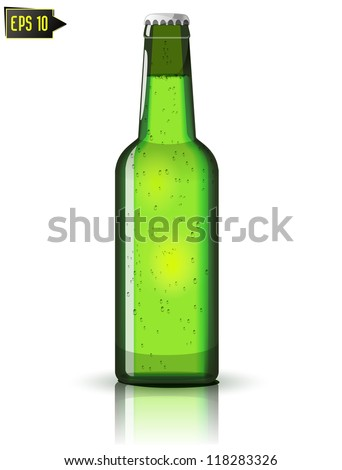 green beer bottle isolated with reflection - stock vector
