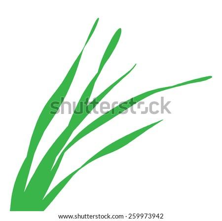 blade of grass vector - photo #15