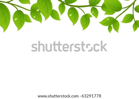 Green Branches, Isolated On White Background, Vector Illustration - stock vector