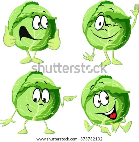green cabbage cartoon isolated on white background - stock vector