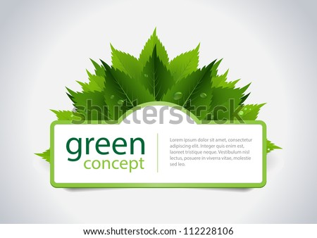 Green concept design, fresh leafs and water dorps. Vector illustration. - stock vector