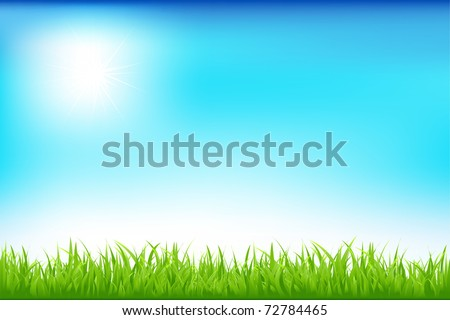 Green Field And Blue Sky, Vector Illustration - stock vector