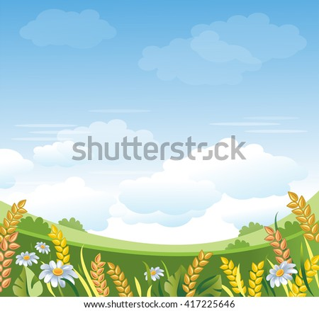 Green Field. Rural Landscape. Wheat Ears and Chamomiles vector illustration. Organic Farm background. Summer Nature. Agricultural banner. - stock vector