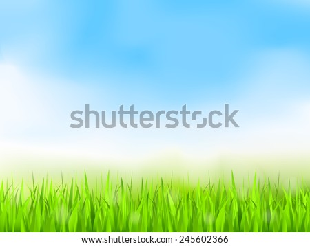 Green grass and blue sky, summer background, vector eps10 illustration, gradient mesh - stock vector