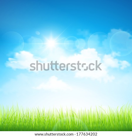 Green grass and blue sky. Vector - stock vector
