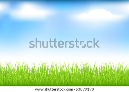 Green Grass And Blue Sky With Clouds - stock vector