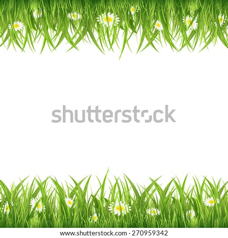 Green grass and flowers on white background, illustration. - stock vector