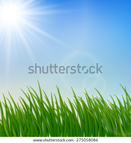 Green grass blue sky and sun background. Vector Illustration - stock vector