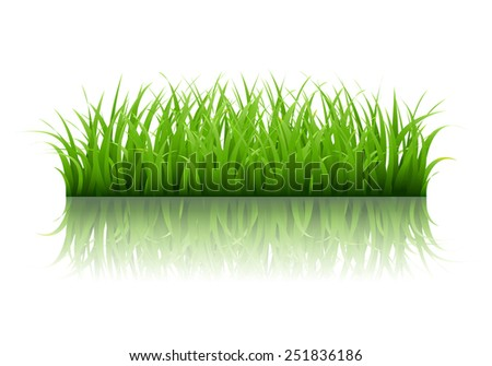 Green Grass Border With Gradient Mesh, Vector Illustration - stock vector