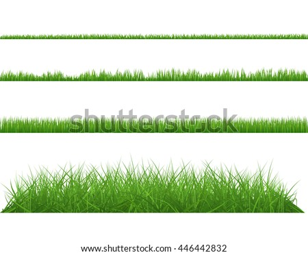 Green grass dense big and small. Set planting of greenery on white background. - stock vector