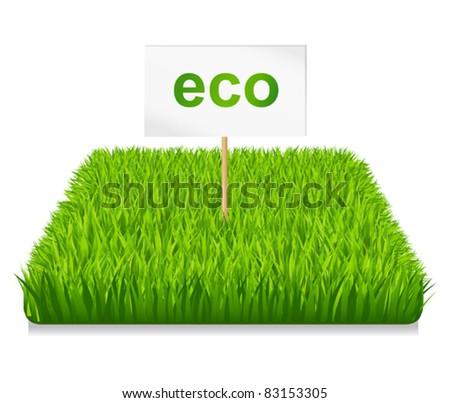 Green grass eco - stock vector