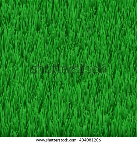 Green grass field - stock vector