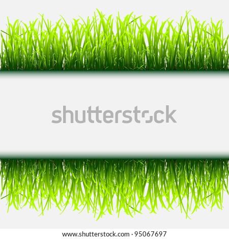 Green grass frame.Vector eps 10 - stock vector